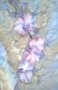 Платок з орхідеями